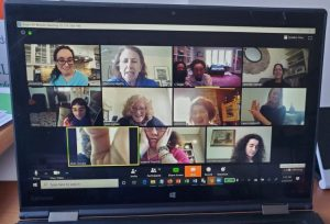 screen shot of zoom meeting with 12 participants
